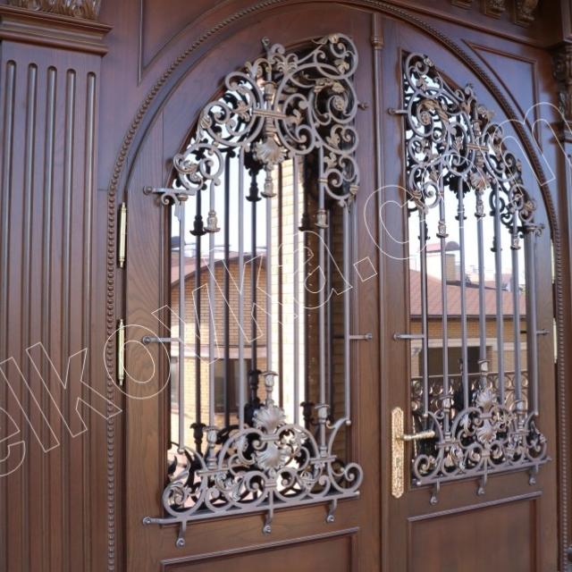 Wrought iron door with glass
