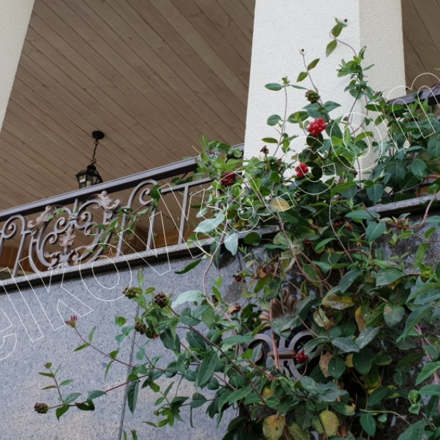 Fencing on the terrace
