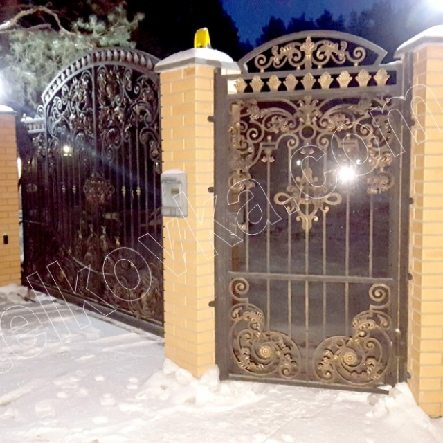 Wrought iron gates and wrought iron wicket